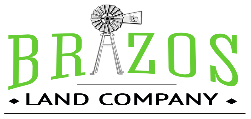 Brazos Logo (black and green smaller)